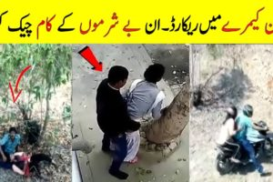 Most Amazing Footages Recorded By Drone Camera In Hindi    Best moments caught on camera by Drones